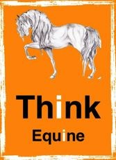 Think Equine Norge